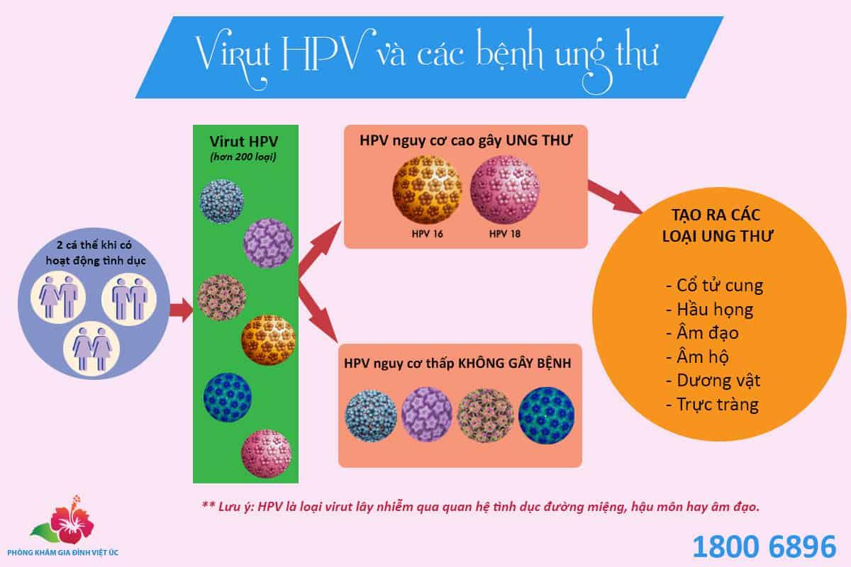 Moi-quan-he-giua-virut-HPV-va-cac-benh-ung-thu
